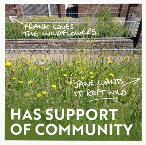 Has support of community infographic