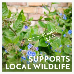 Supports local wildlife infographic